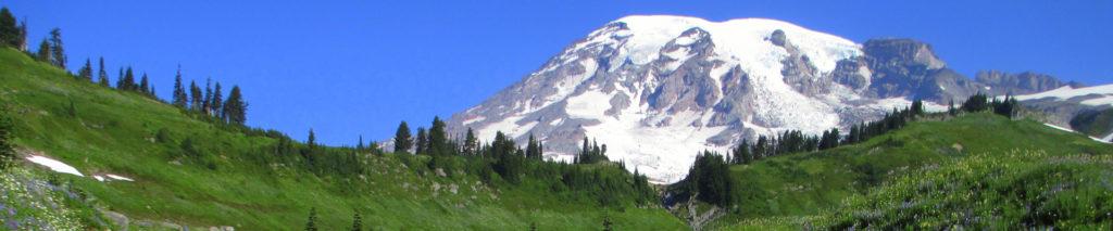 View of Mount Rainier